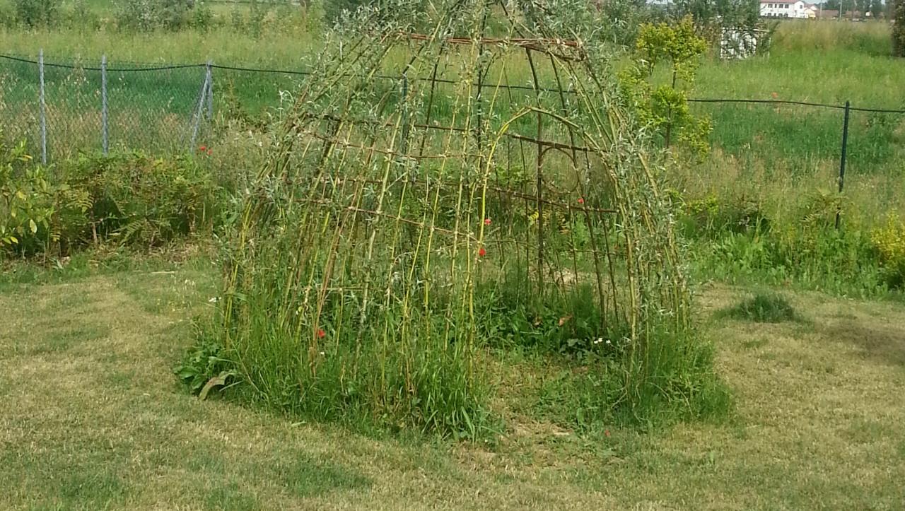 Archene struttura con rami di salice for Rami di salice
